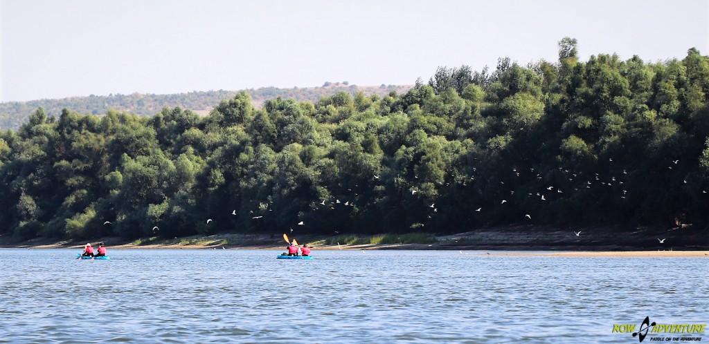 ROW for FUN – Danube Regatta Adventure