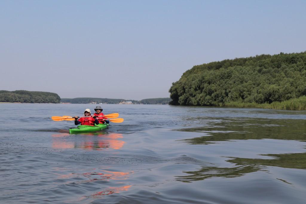 ROW for FUN – Dunav Regatta